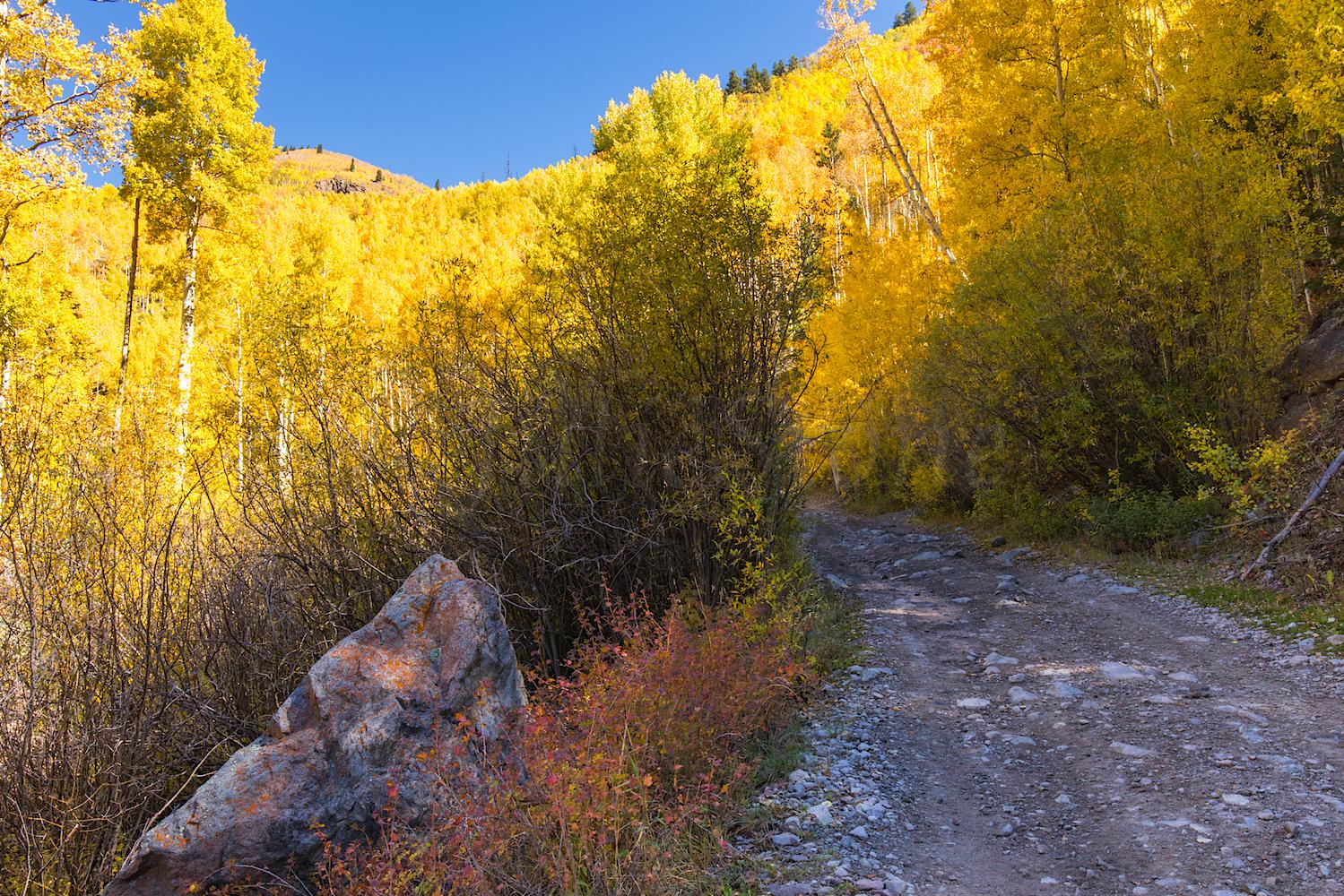 Nellie Creek Road, Image # 5212