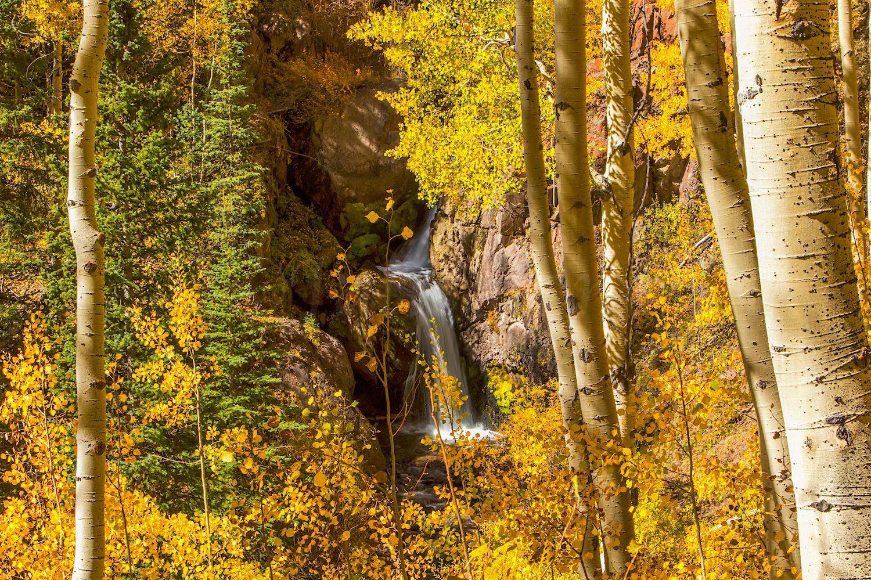 Nellie Creek Falls, Image # 5519