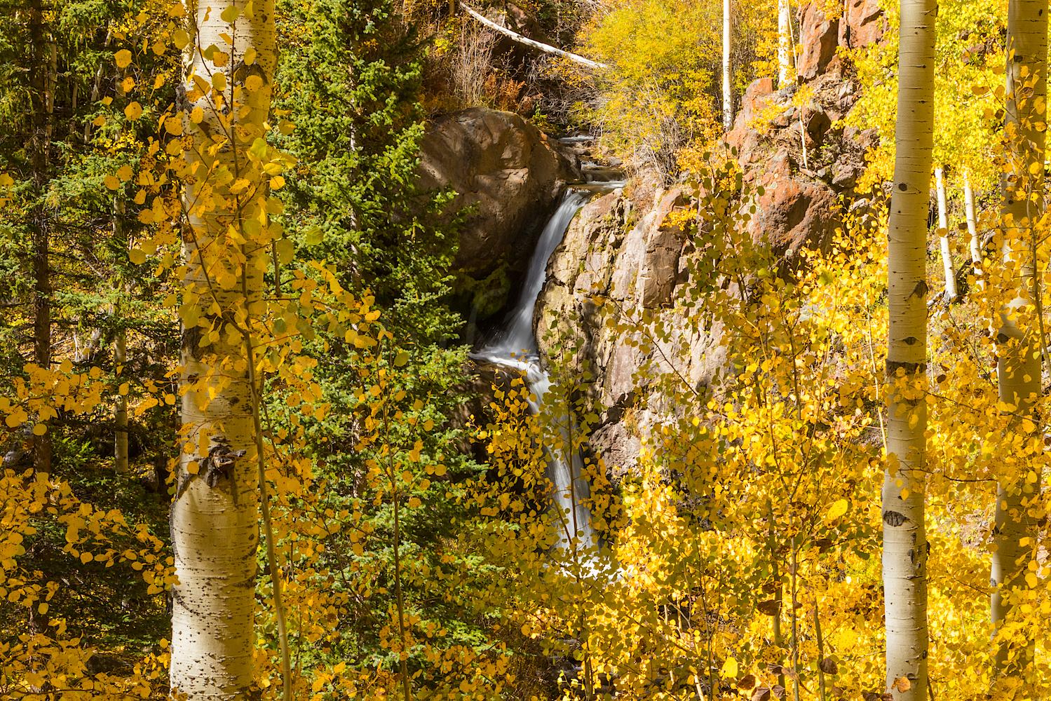 Nellie Creek Falls, Image # 5457