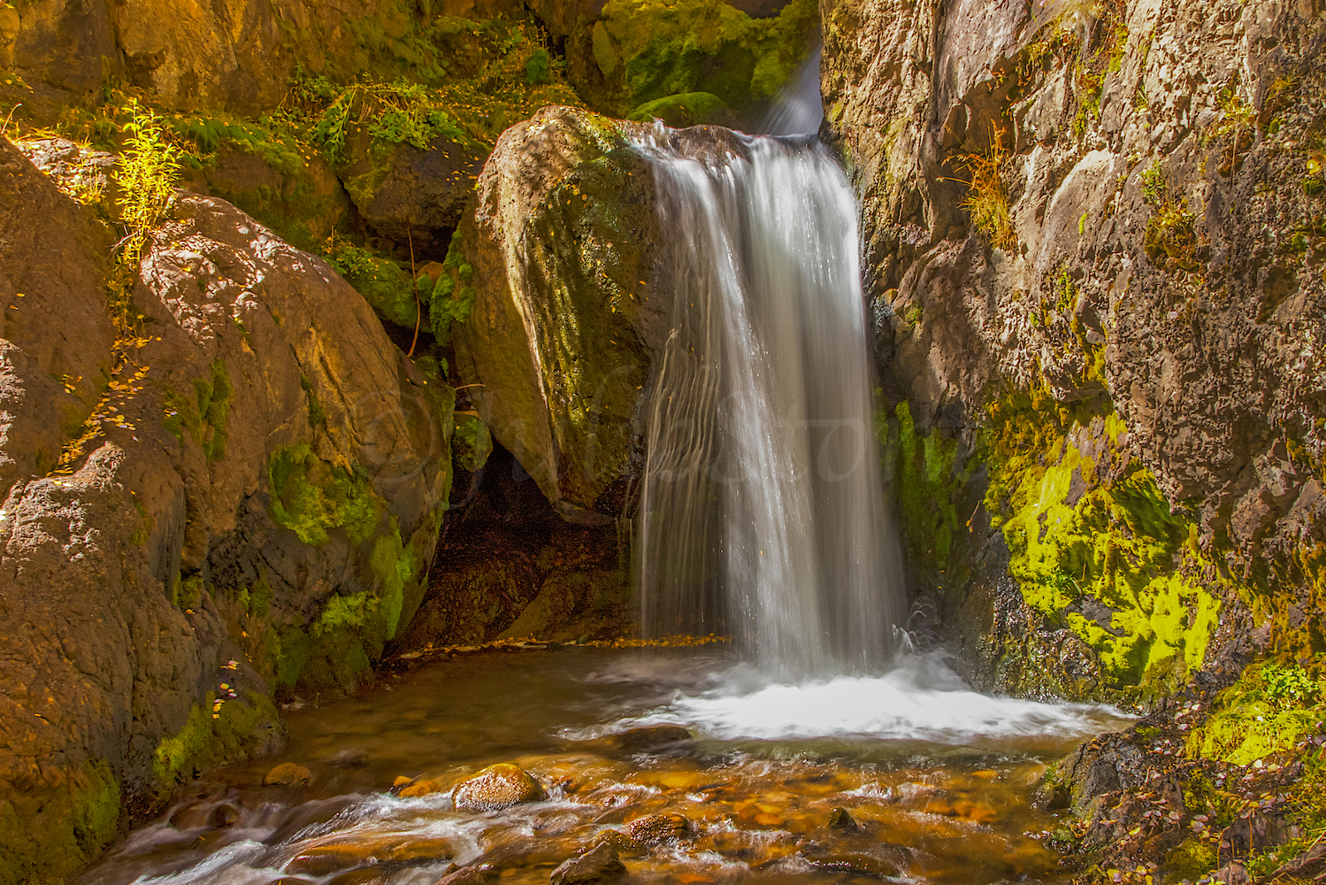 Nellie Creek Falls, Image # 5606