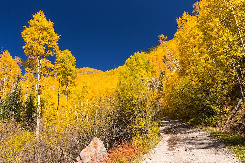 Nellie Creek Road, Image # 5898