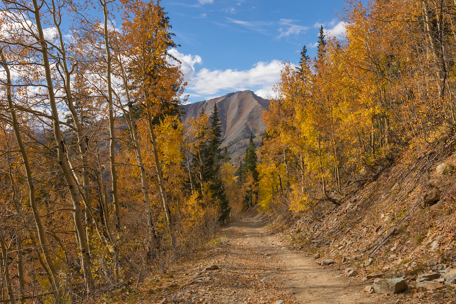 Road to Little Giant Basin, Image # 8913