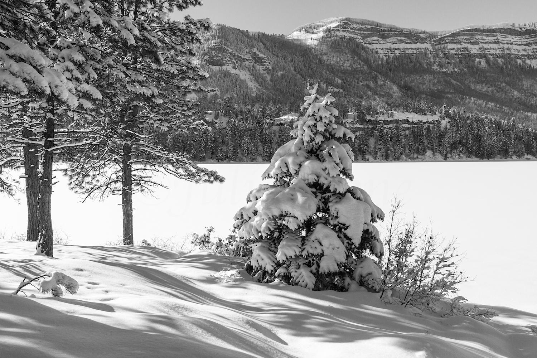 Haviland Lake Snowshoe, Image # 1908