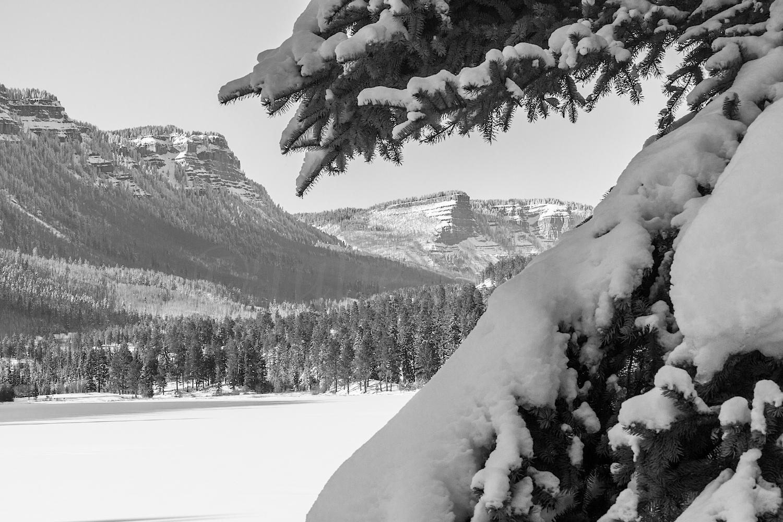 Haviland Lake Snowshoe, Image # 2038