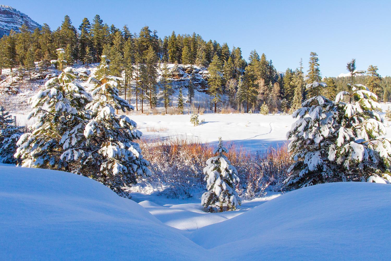 Haviland Lake Snowshoe, Image # 2050