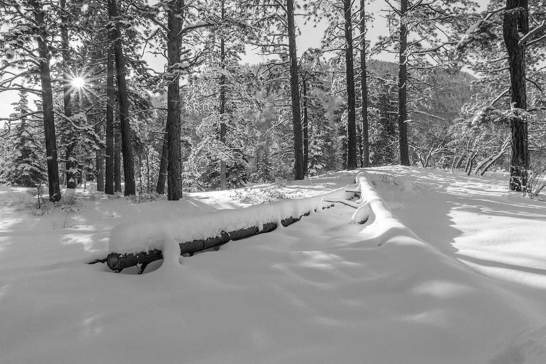 Haviland Lake Snowshoe, Image # 2159