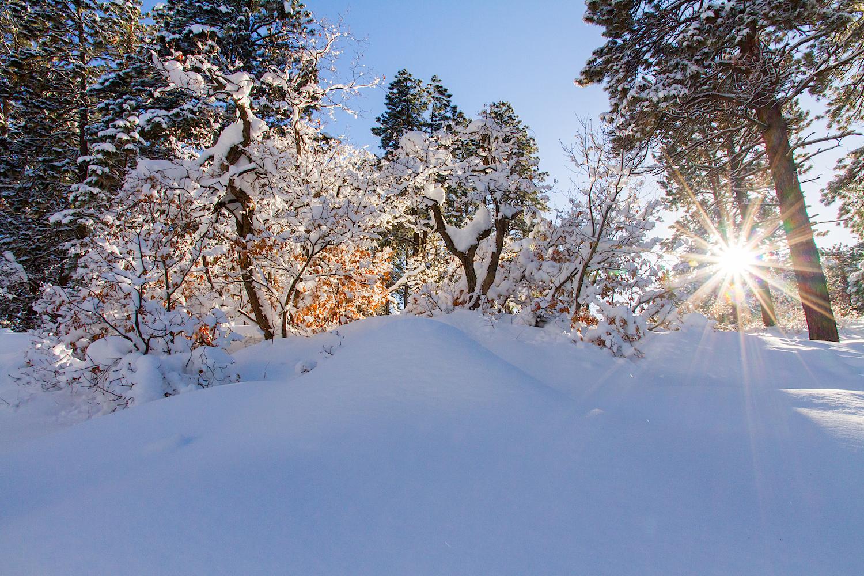 Haviland Lake Snowshoe, Image # 2143