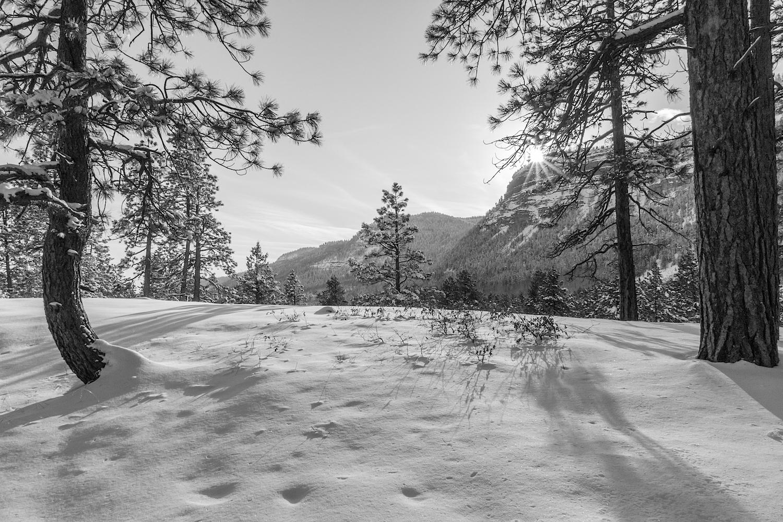 Haviland Lake Snowshoe, Image # 2245