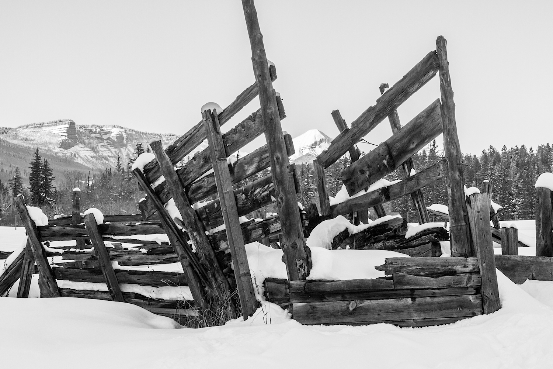 Haviland Lake Snowshoe, Image # 2284