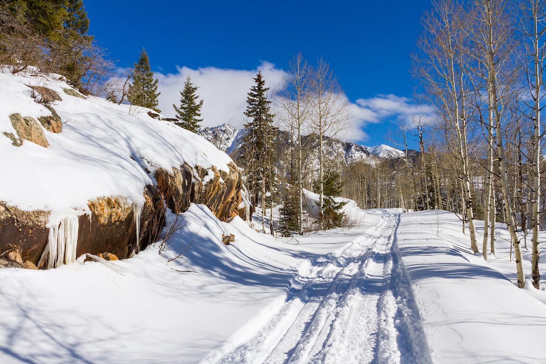 Lime Creek Snowshoe, Image # 2336