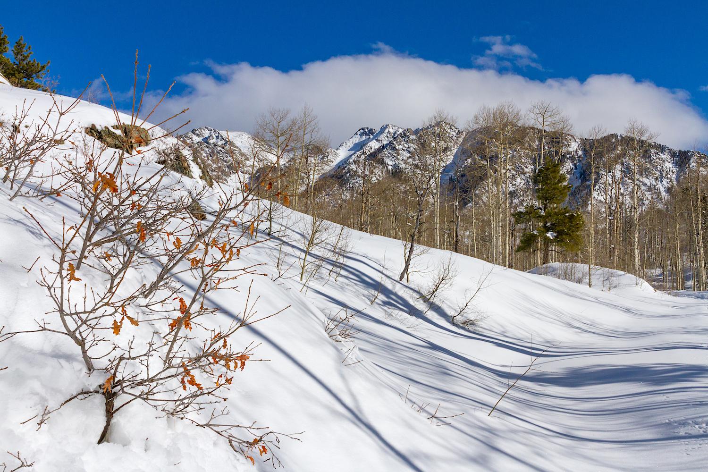 Lime Creek Snowshoe, Image # 2367