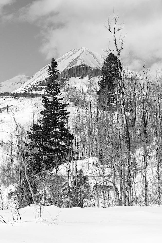 Lime Creek Snowshoe, Image # 2453