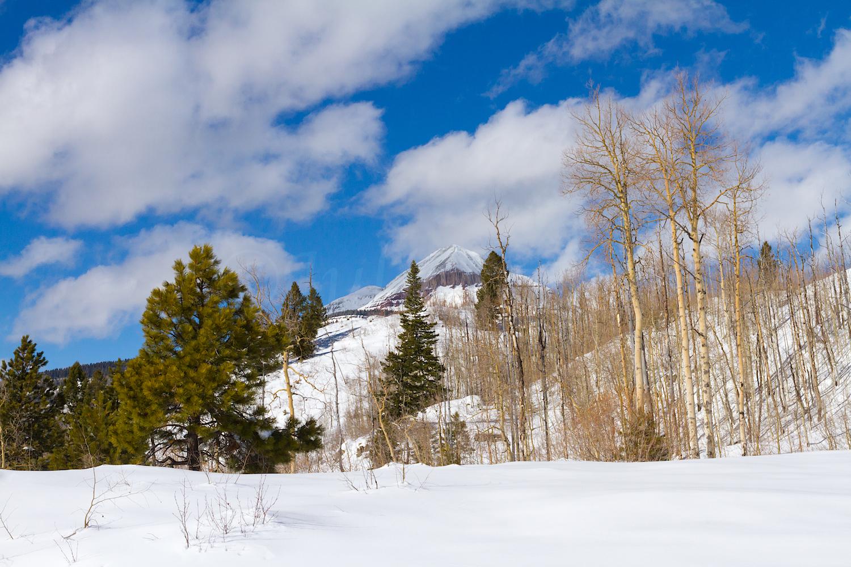 Lime Creek Snowshoe, Image # 2449