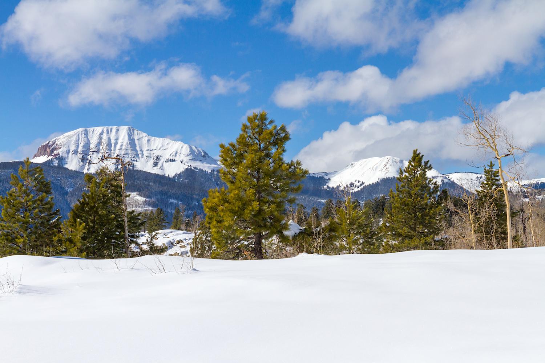Lime Creek Snowshoe, Image # 2455