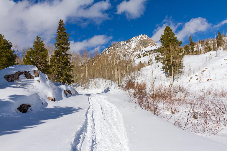 Lime Creek Snowshoe, Image # 2473