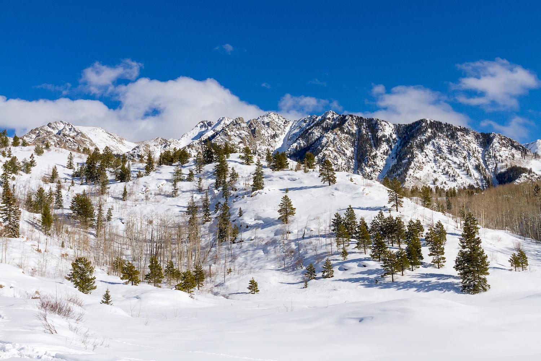 Lime Creek Snowshoe, Image # 2626