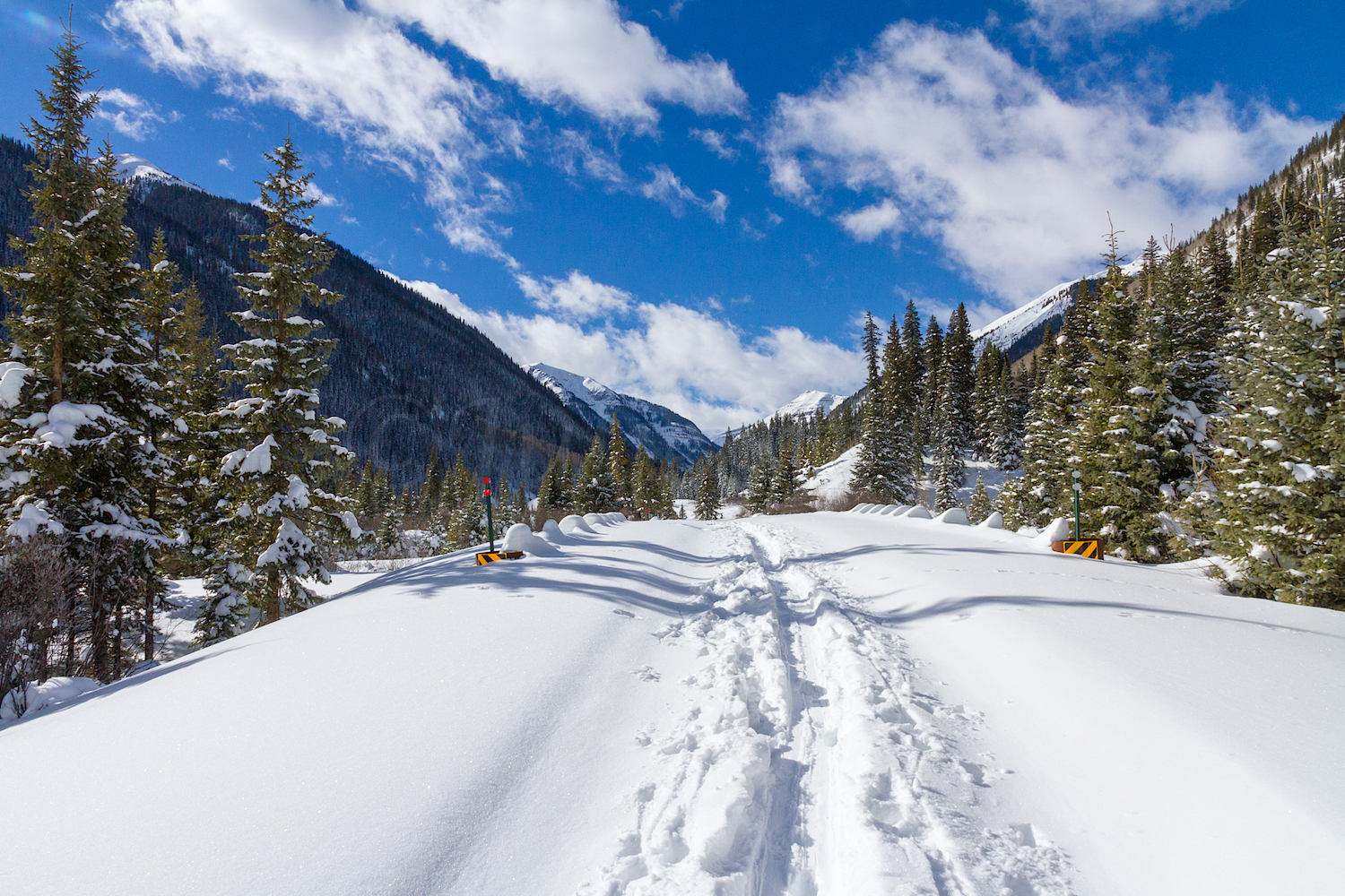 South Mineral Snowshoe, Image # 2691
