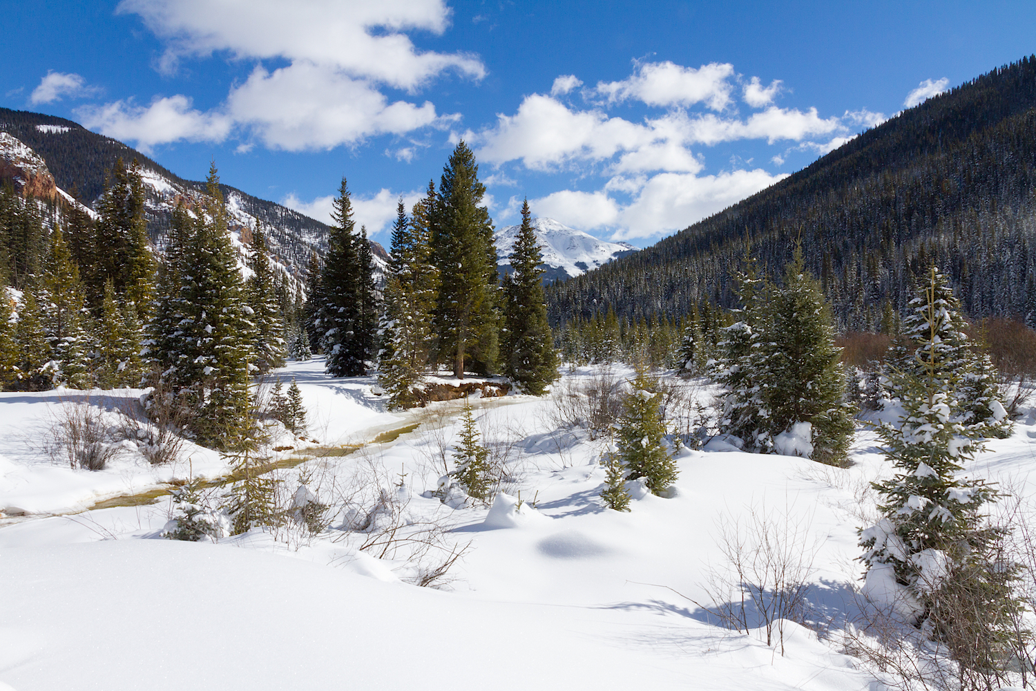 South Mineral Snowshoe, Image # 2744