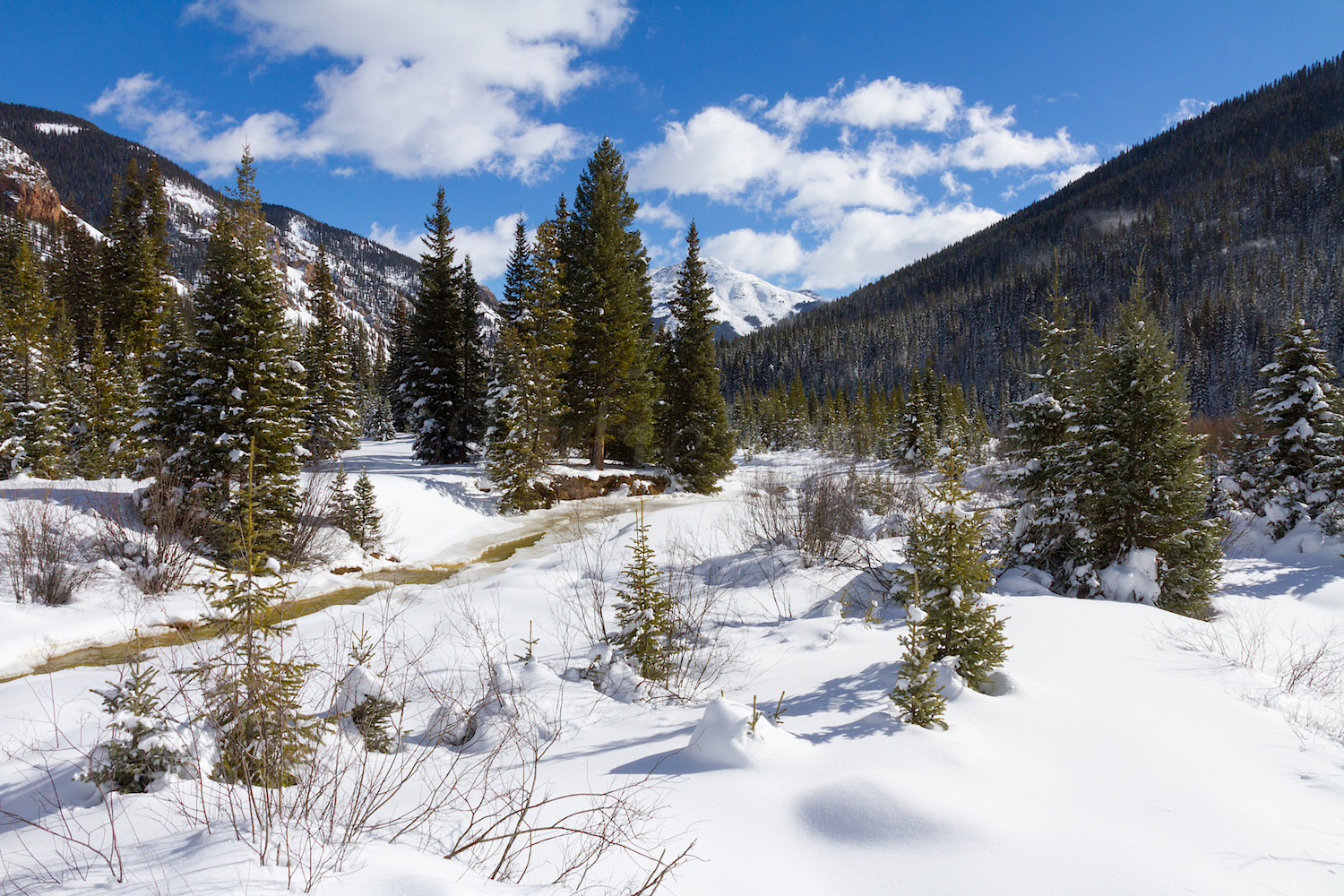 South Mineral Snowshoe, Image # 2749