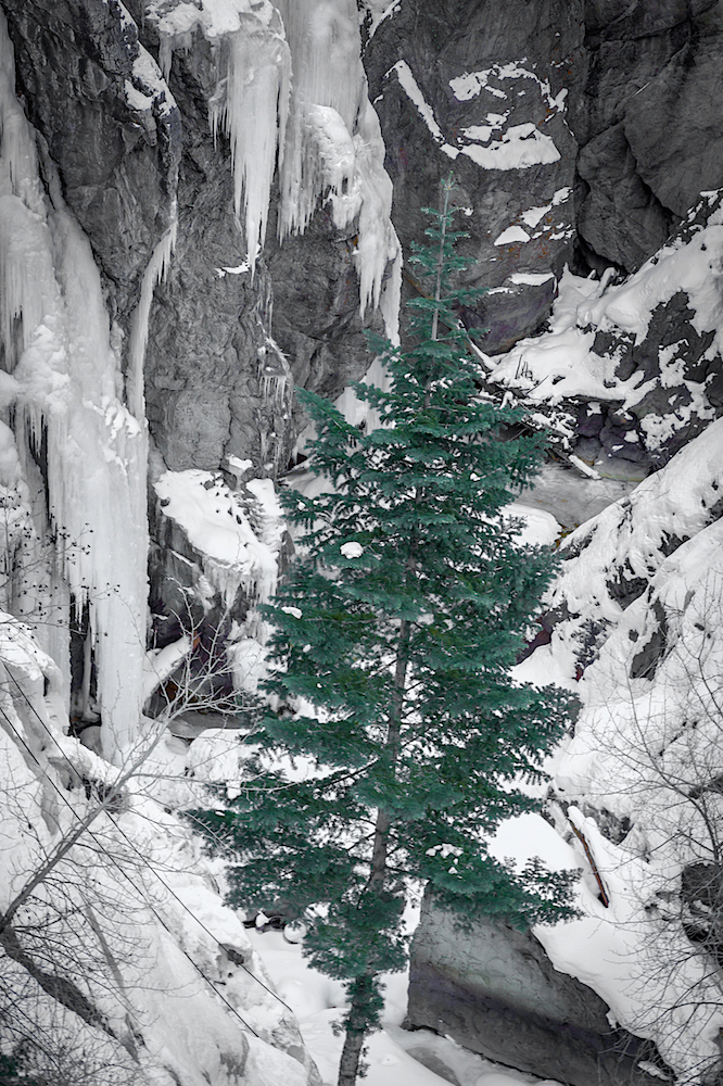 Ouray Ice Park, Image # 4556