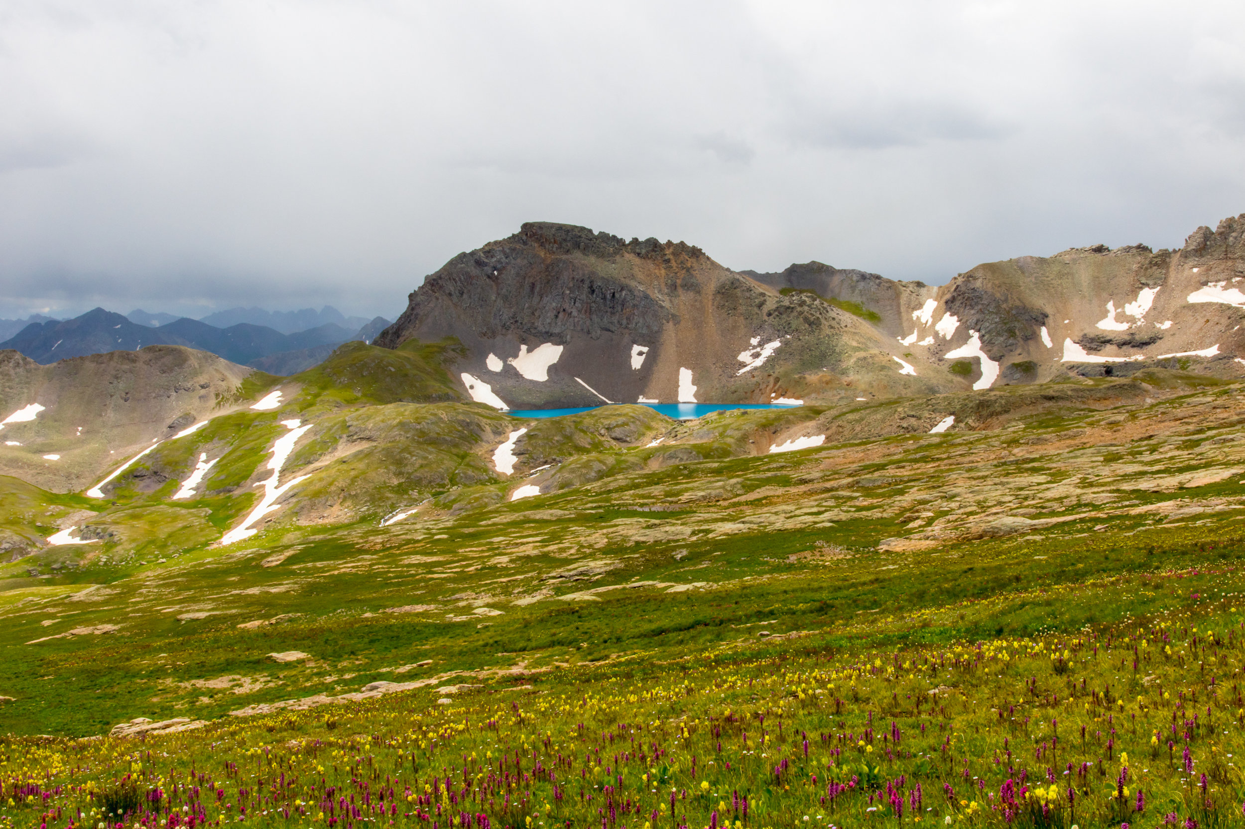 Wildflowers and Storm Clouds at Columbine