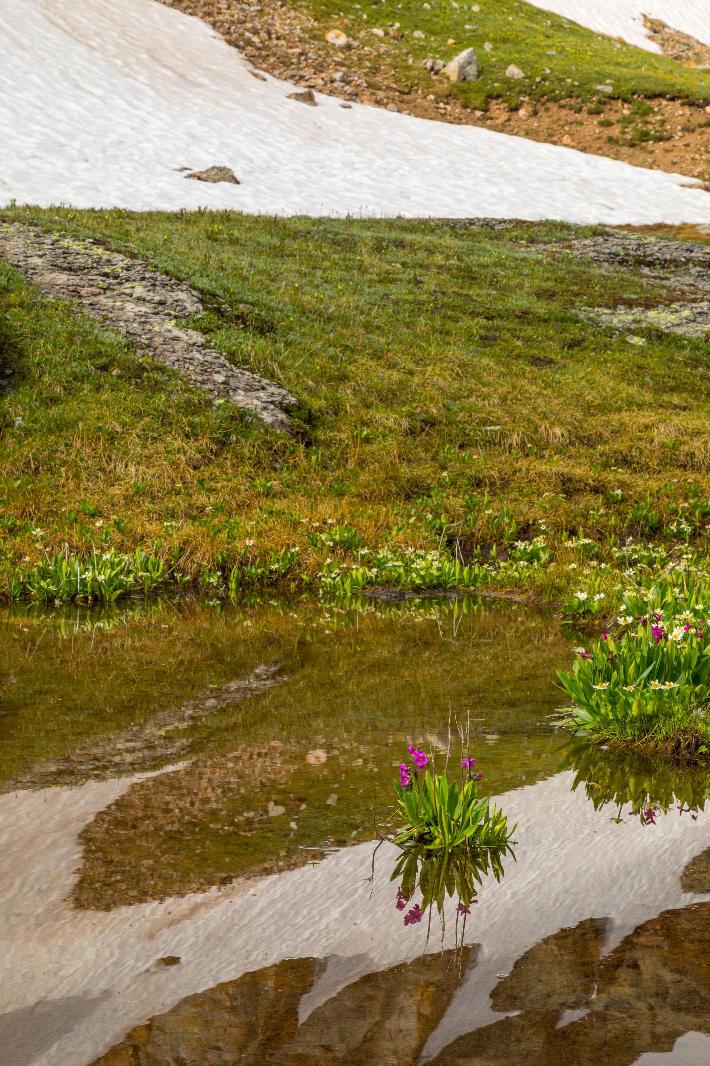 Porphyry Basin, Image # 240