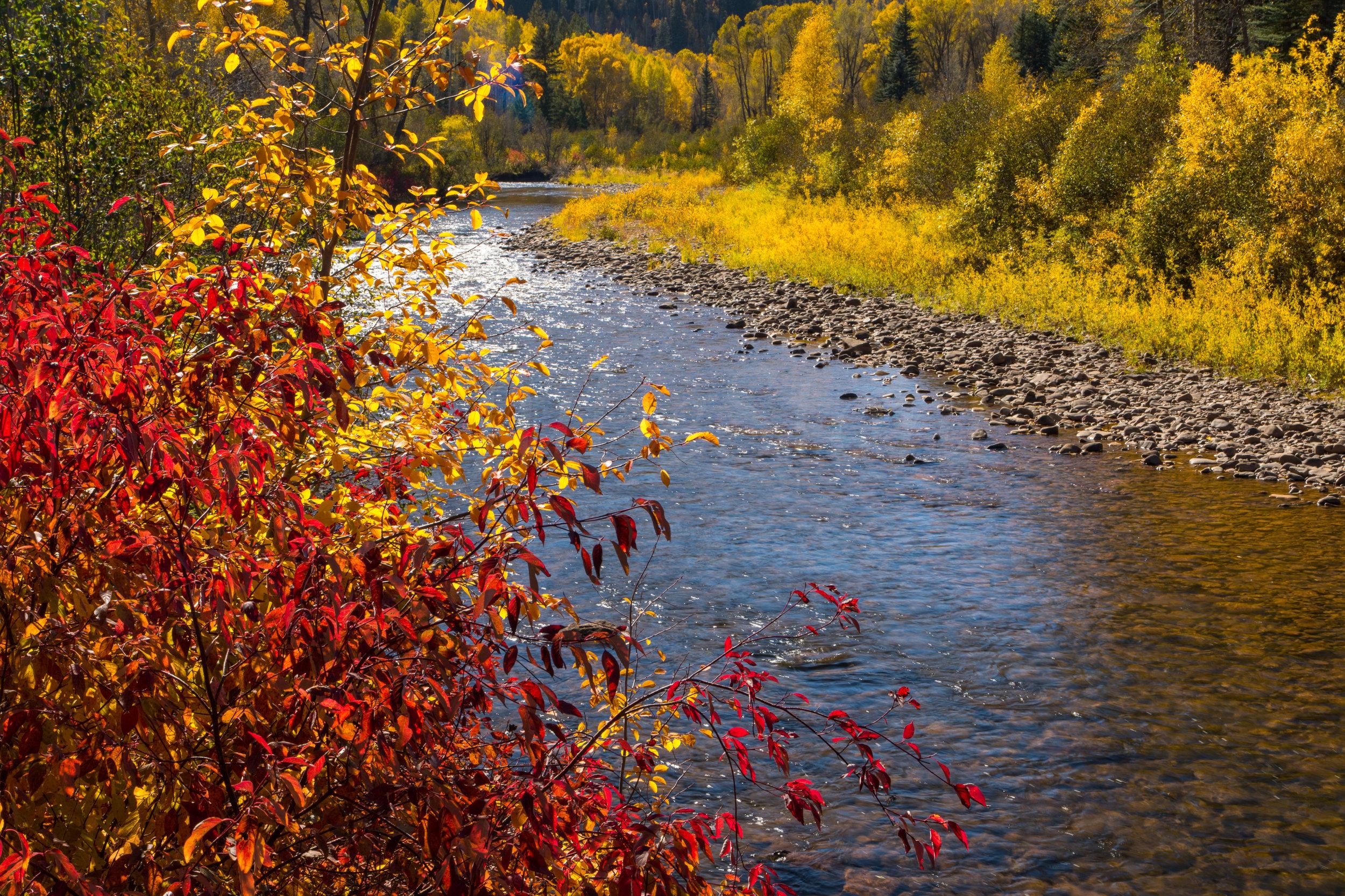 Bear Creek Trailhead, Image # 9588