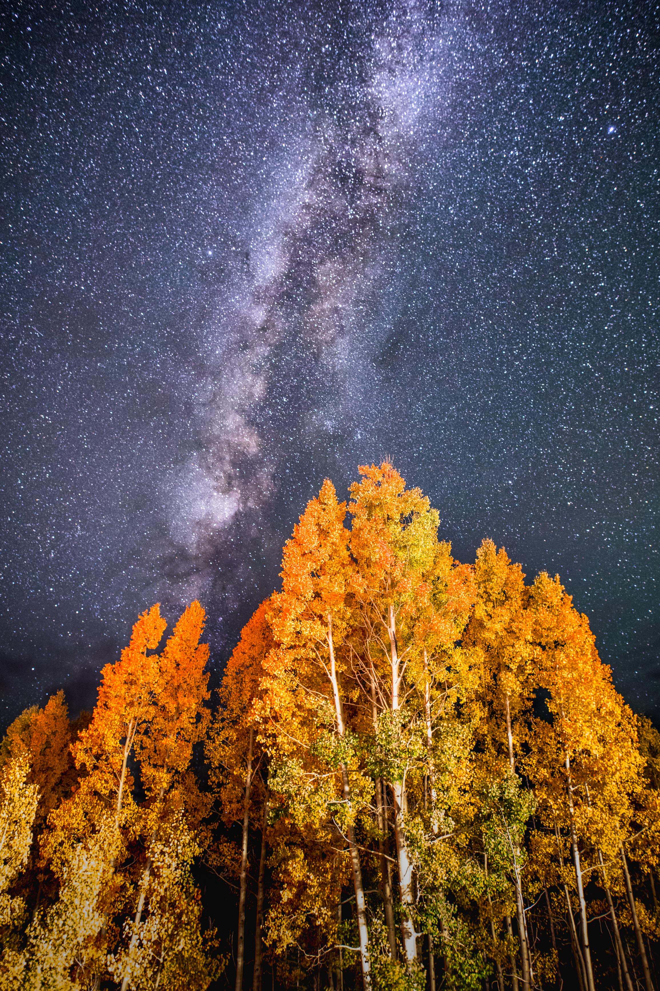 Coal Bank Pass Fall Colors and Milky Way, Image # 0608