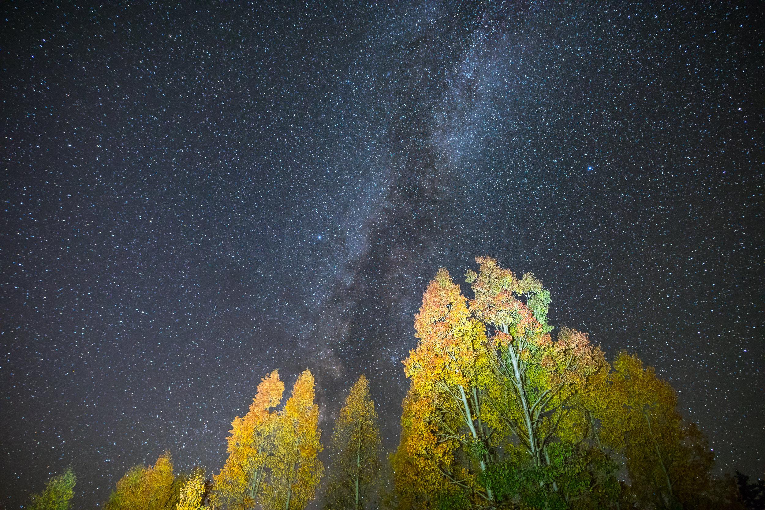 Coal Bank Pass Fall Colors and Milky Way, Image #1801