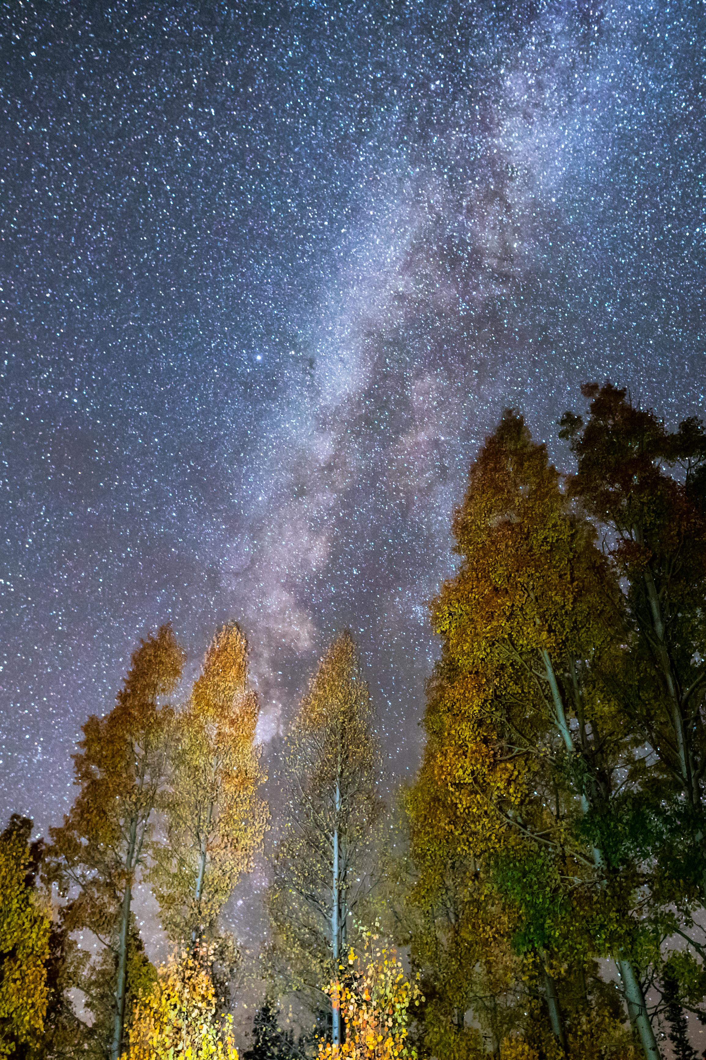 Coal Bank Pass Fall Colors and Milky Way, Image #1809