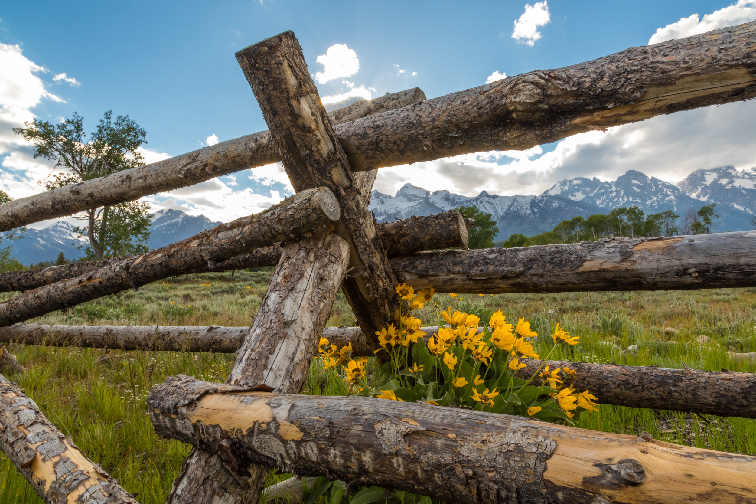 Grand Teton National Park, Image # 1689