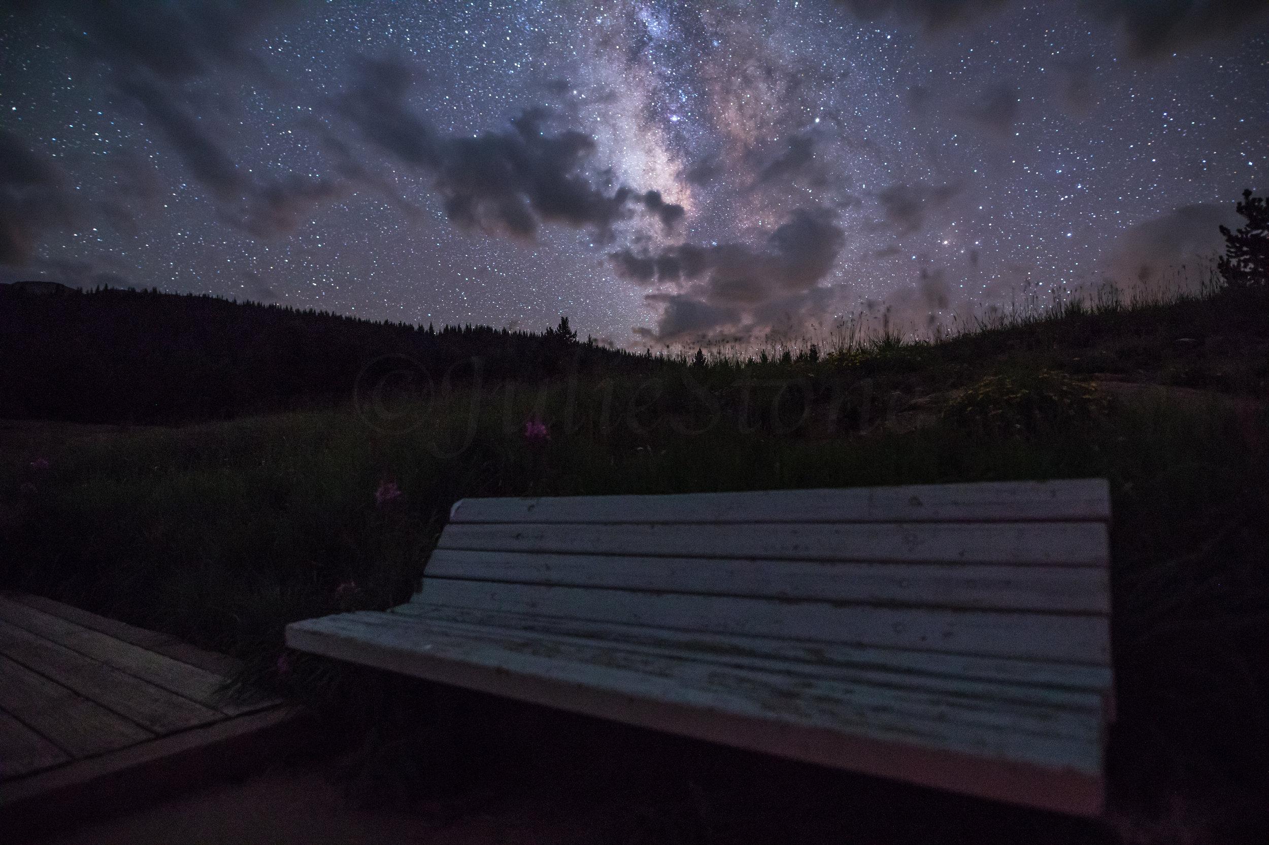 Bench At Andrews Lake, Image # 7517