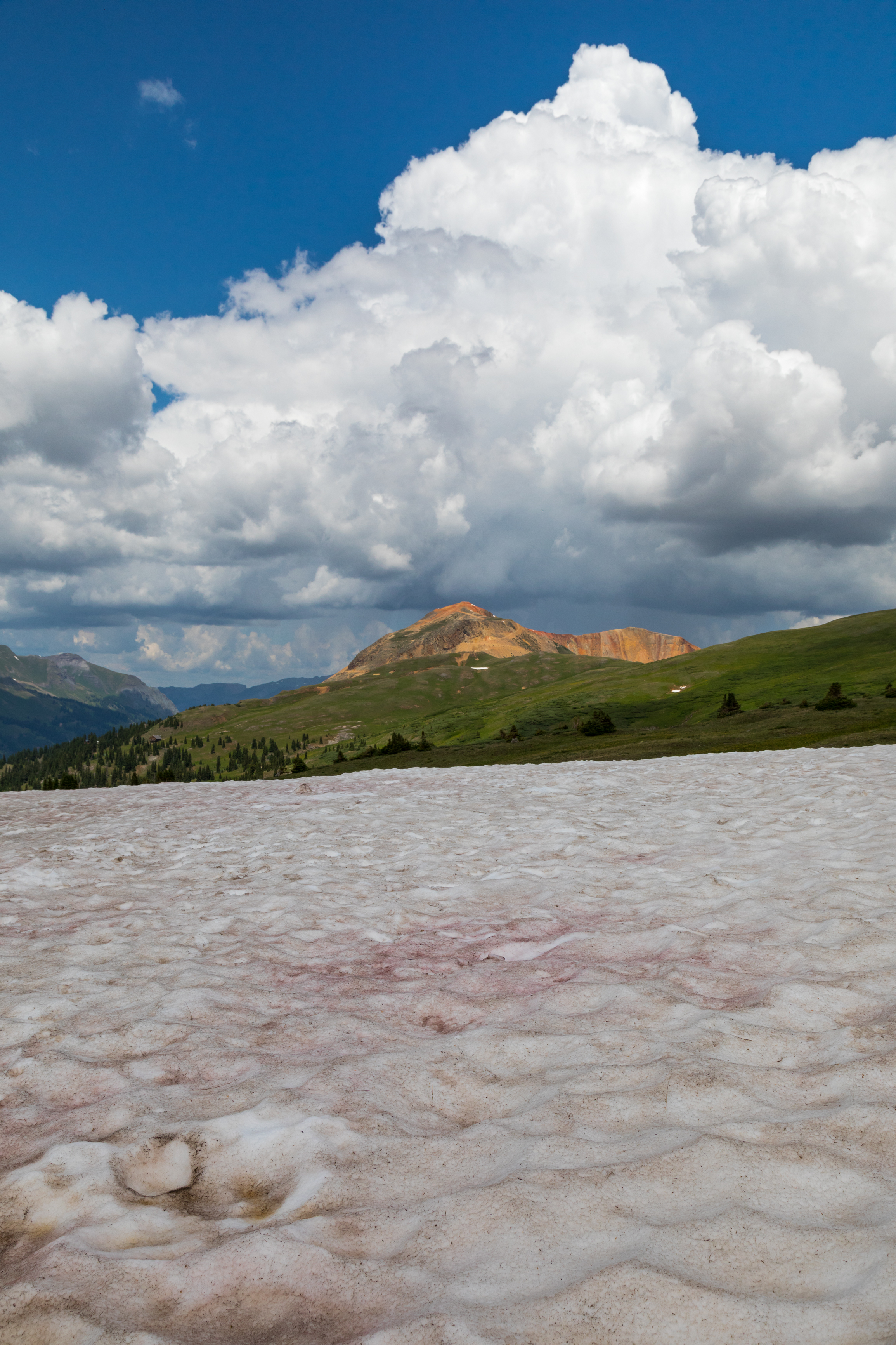 Sunny June day looking at Red Mountain from Browns Gulch Road, Image # 0651