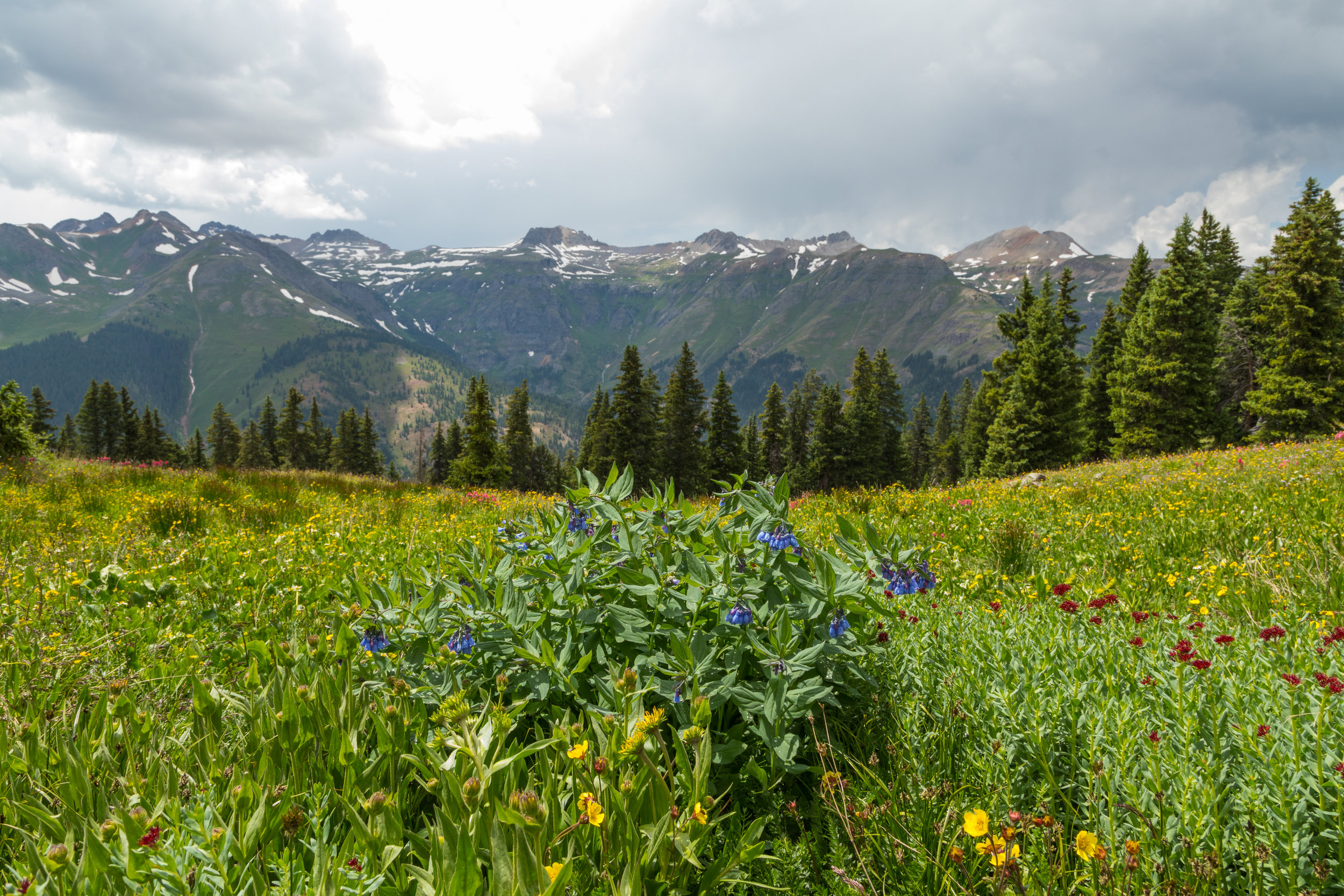Browns Gulch Road, Image # 0684