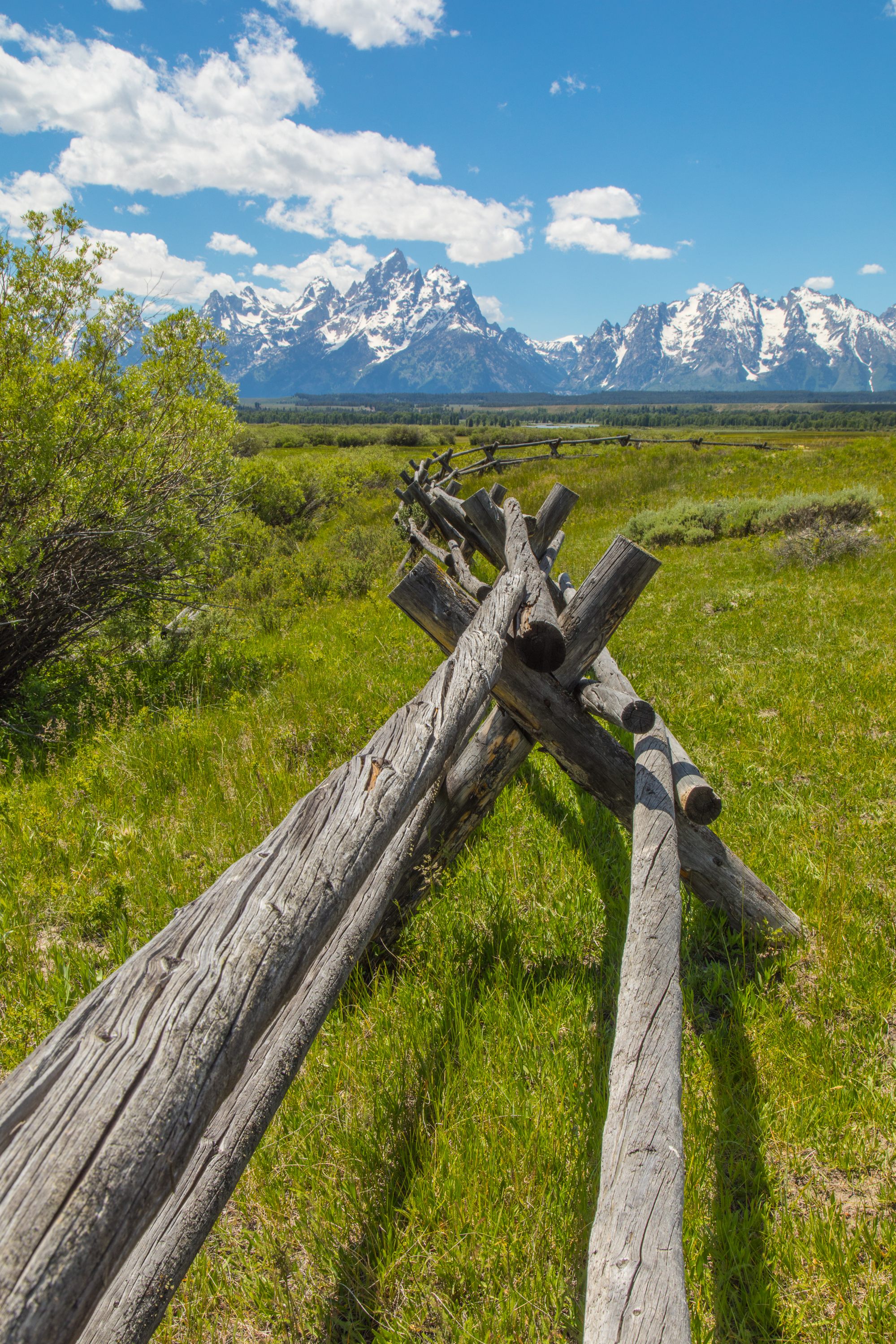 Cunningham Cabin, Grand Teton National Park, Image # 8280
