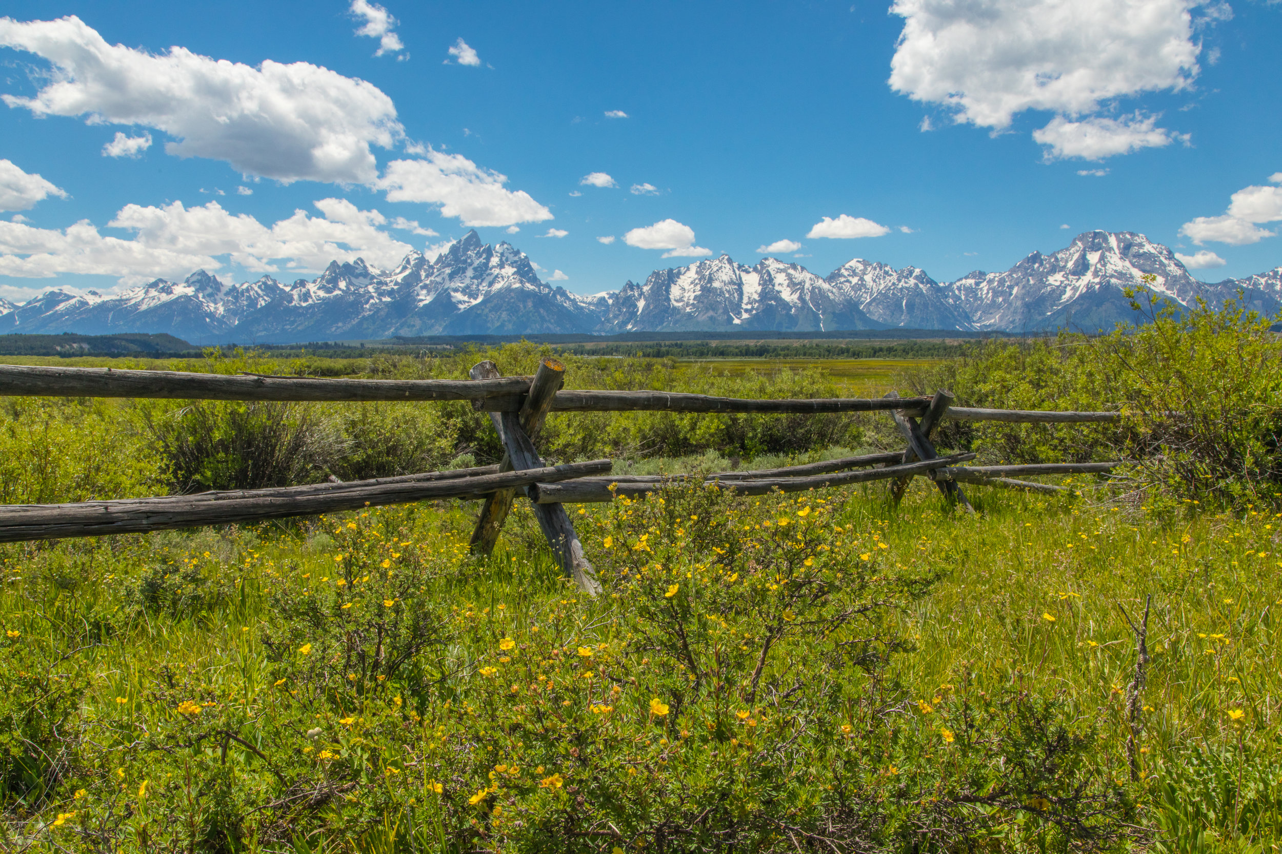 Cunningham Cabin, Grand Teton National Park, Image # 8347