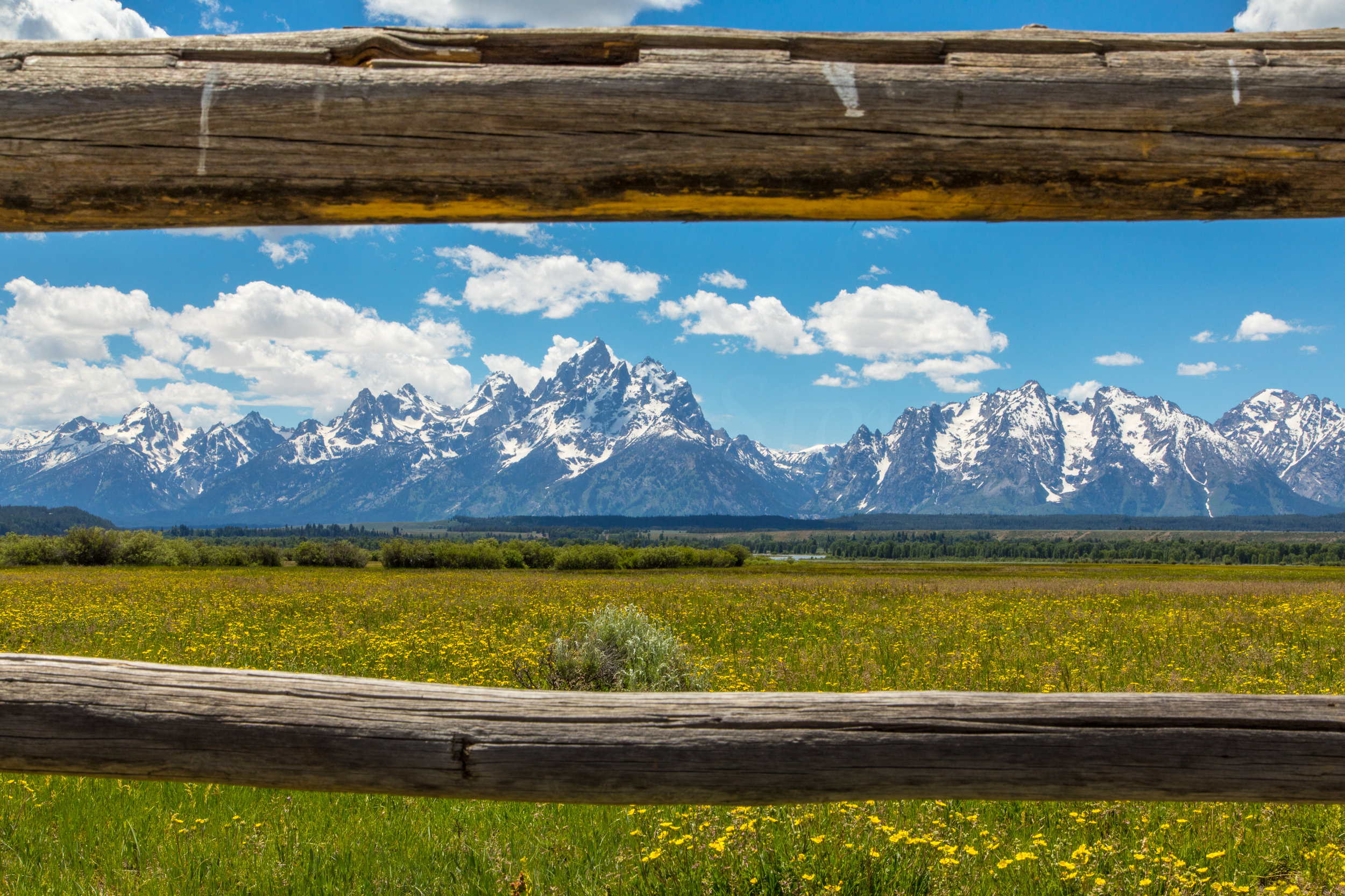 Cunningham Cabin, Grand Teton National Park, Image # 8388