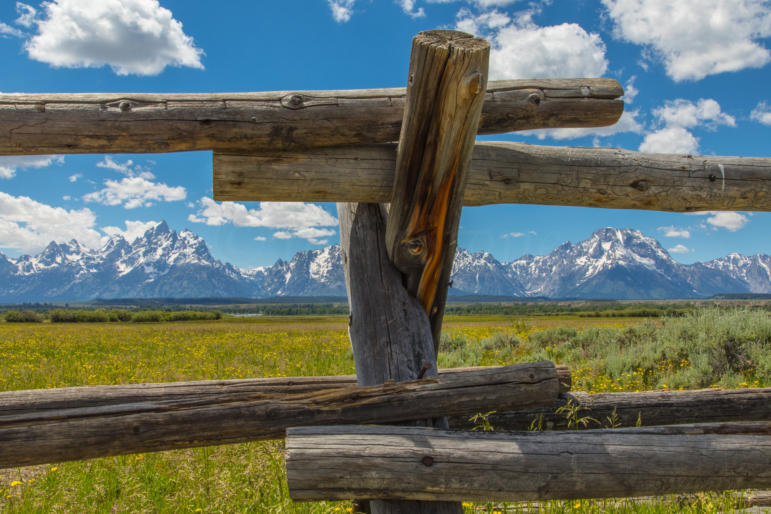 Cunningham Cabin, Grand Teton National Park, Image # 8408