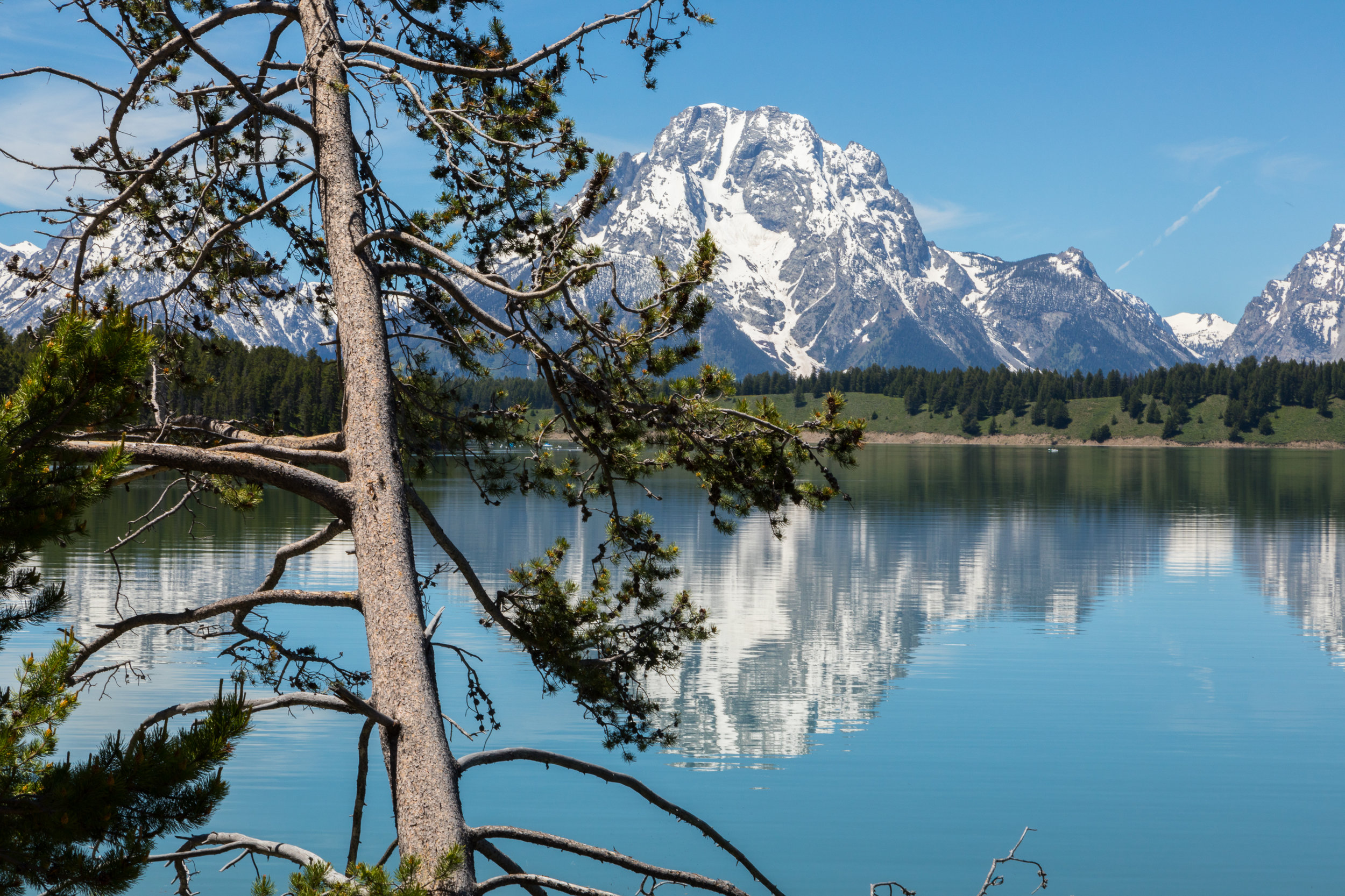 Reflection of Mount Moran in Jackson Lake, Image # 2491