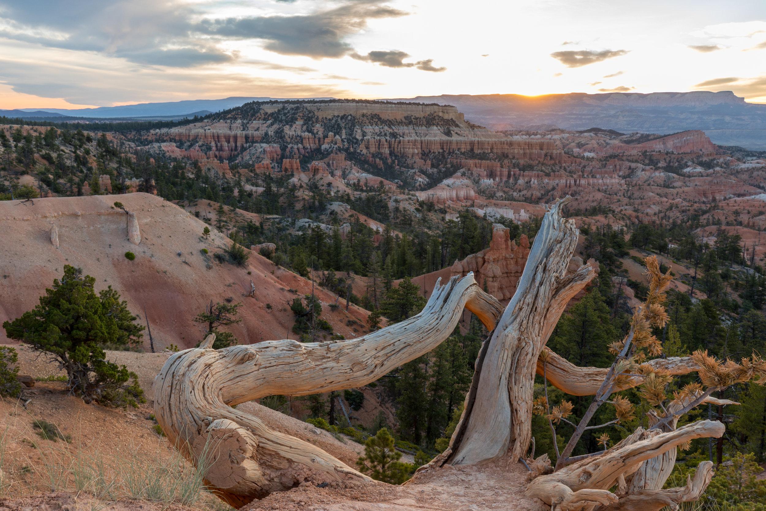 Sunrise Bryce National Park, Image # 0591