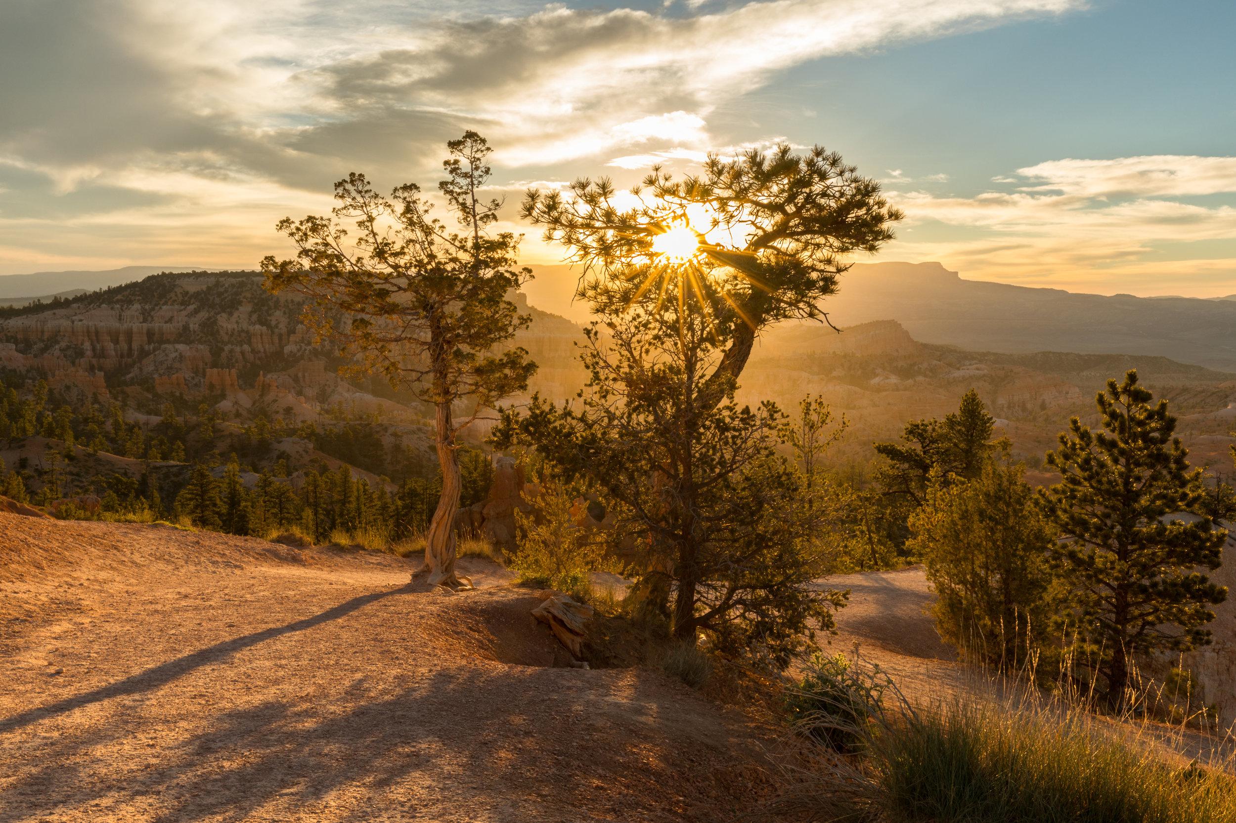 Sunrise Bryce National Park, Image # 0607