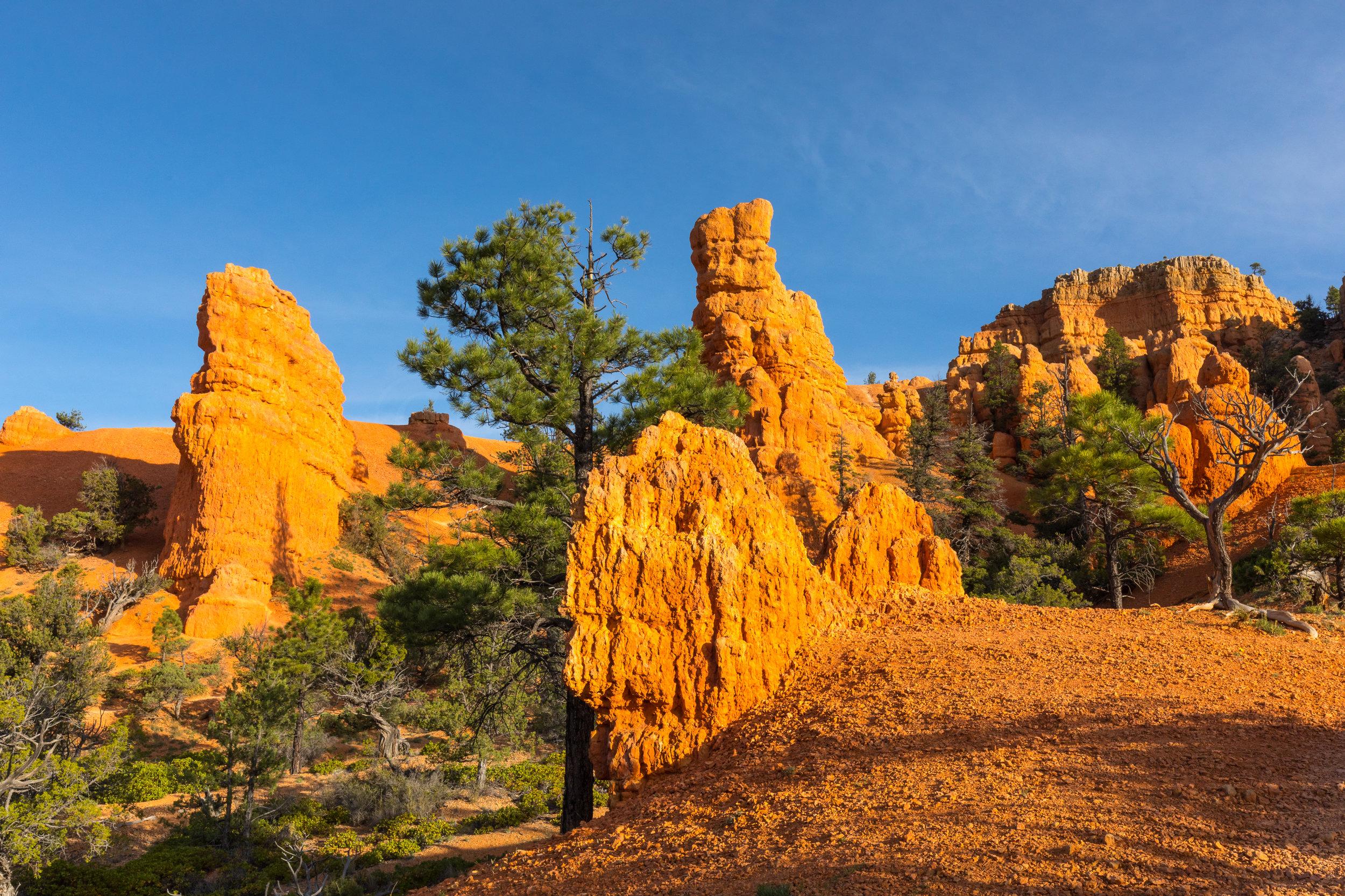 Sunrise Bryce National Park, Image # 0668