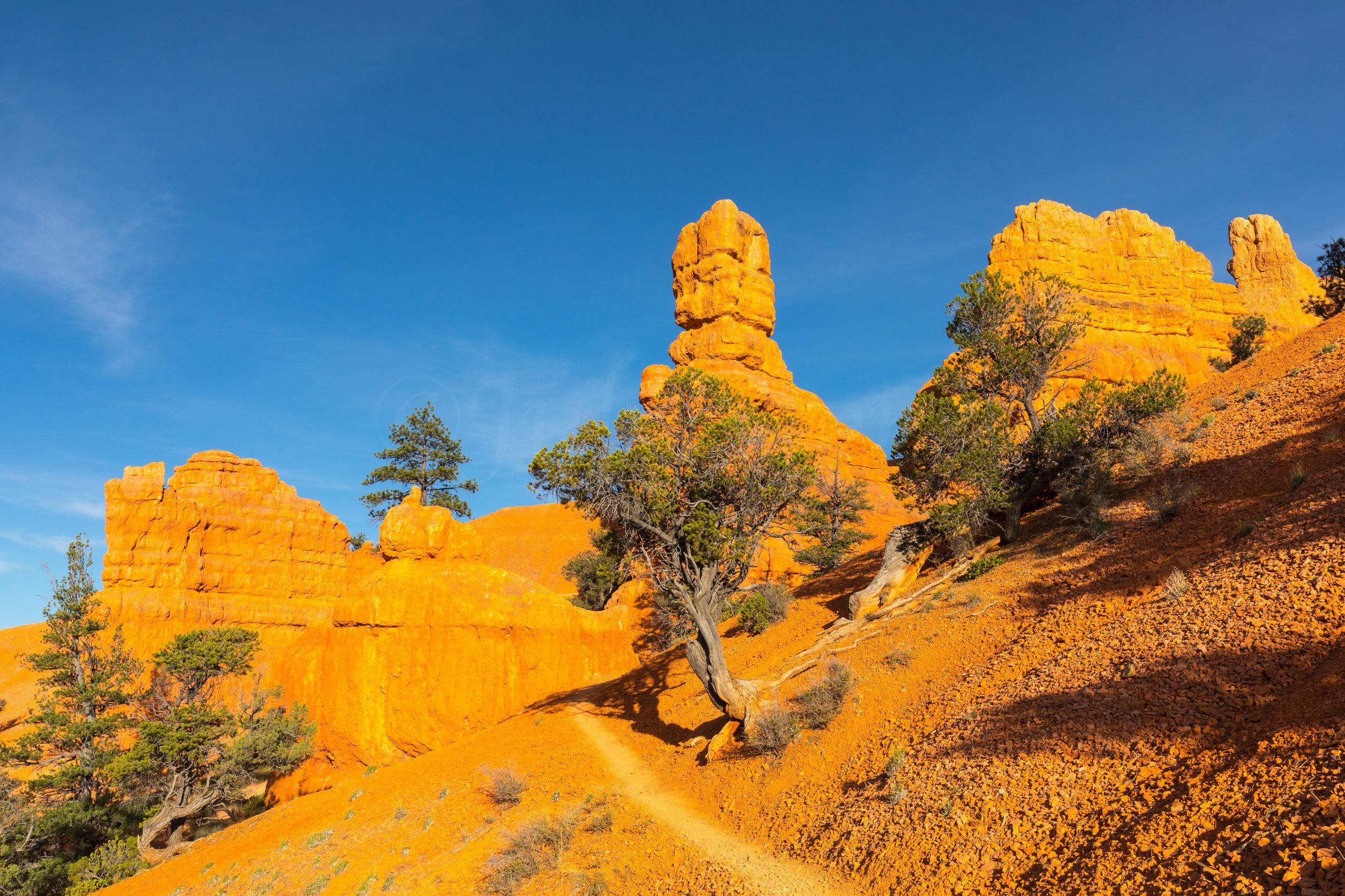 Sunrise Bryce National Park, Image # 0689