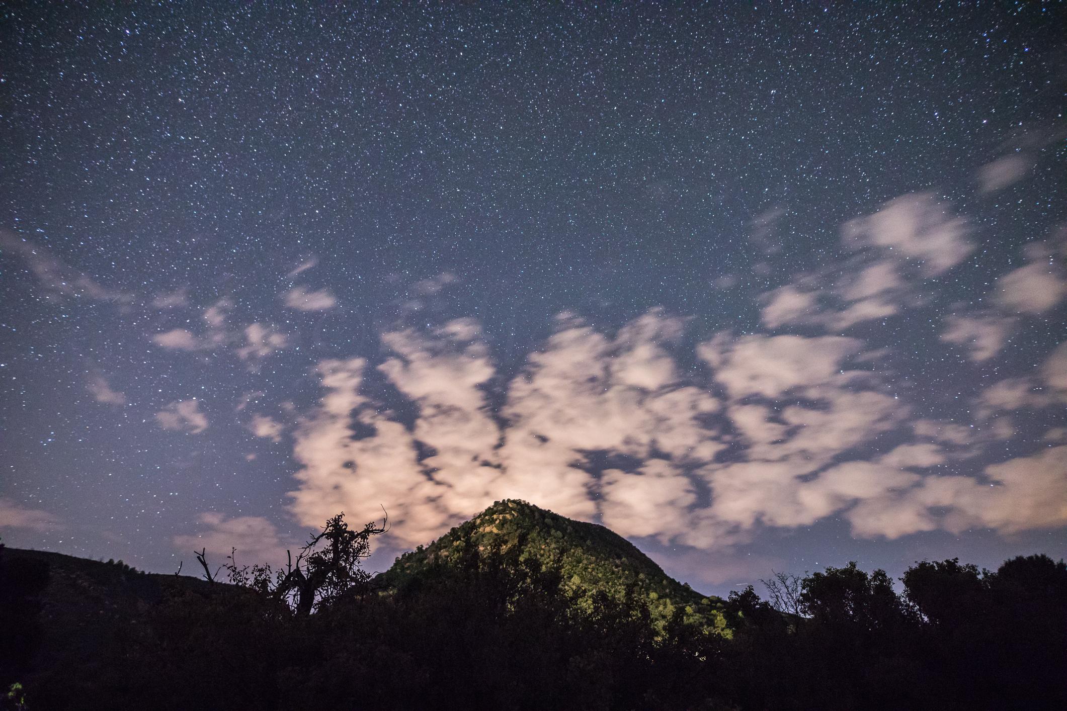 Verde National Park, Image #0399