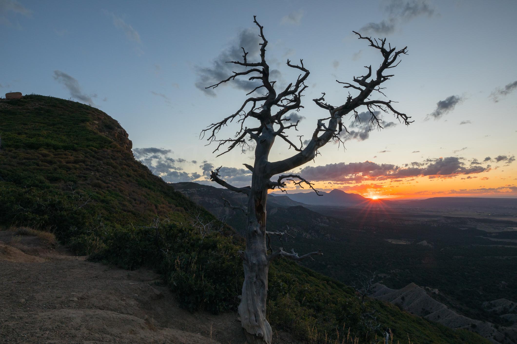 Verde National Park, Image #0253