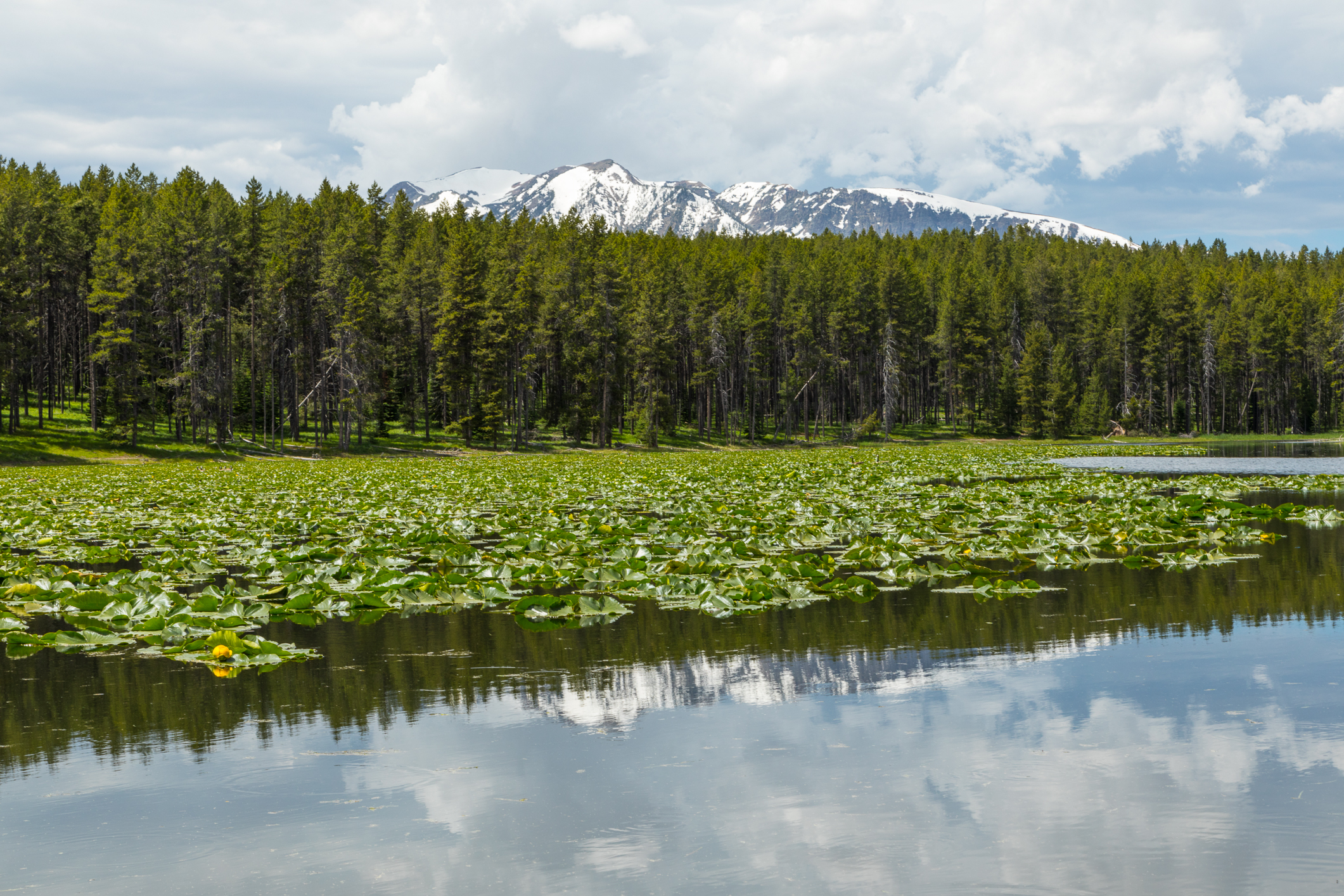 Colter Bay, Image # 2957