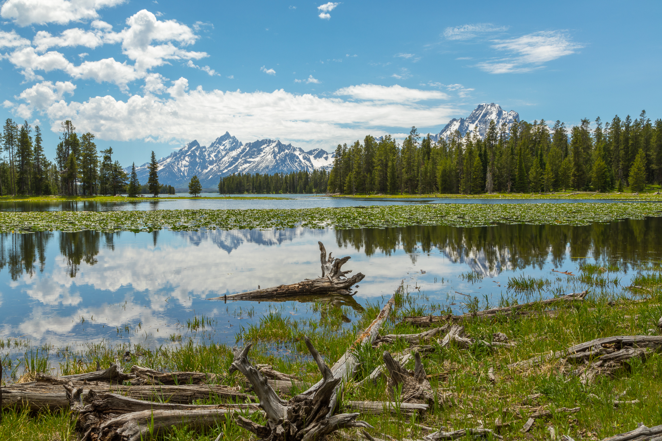 Colter Bay, Image # 3078