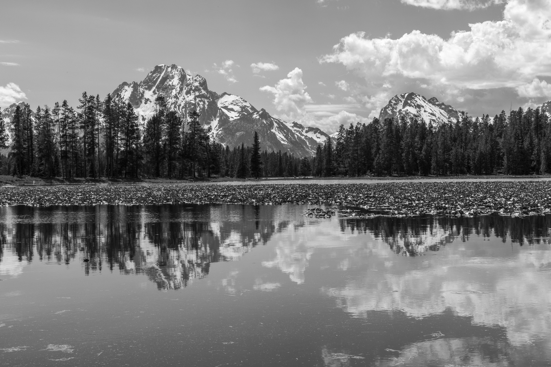 Colter Bay, Image # 3227
