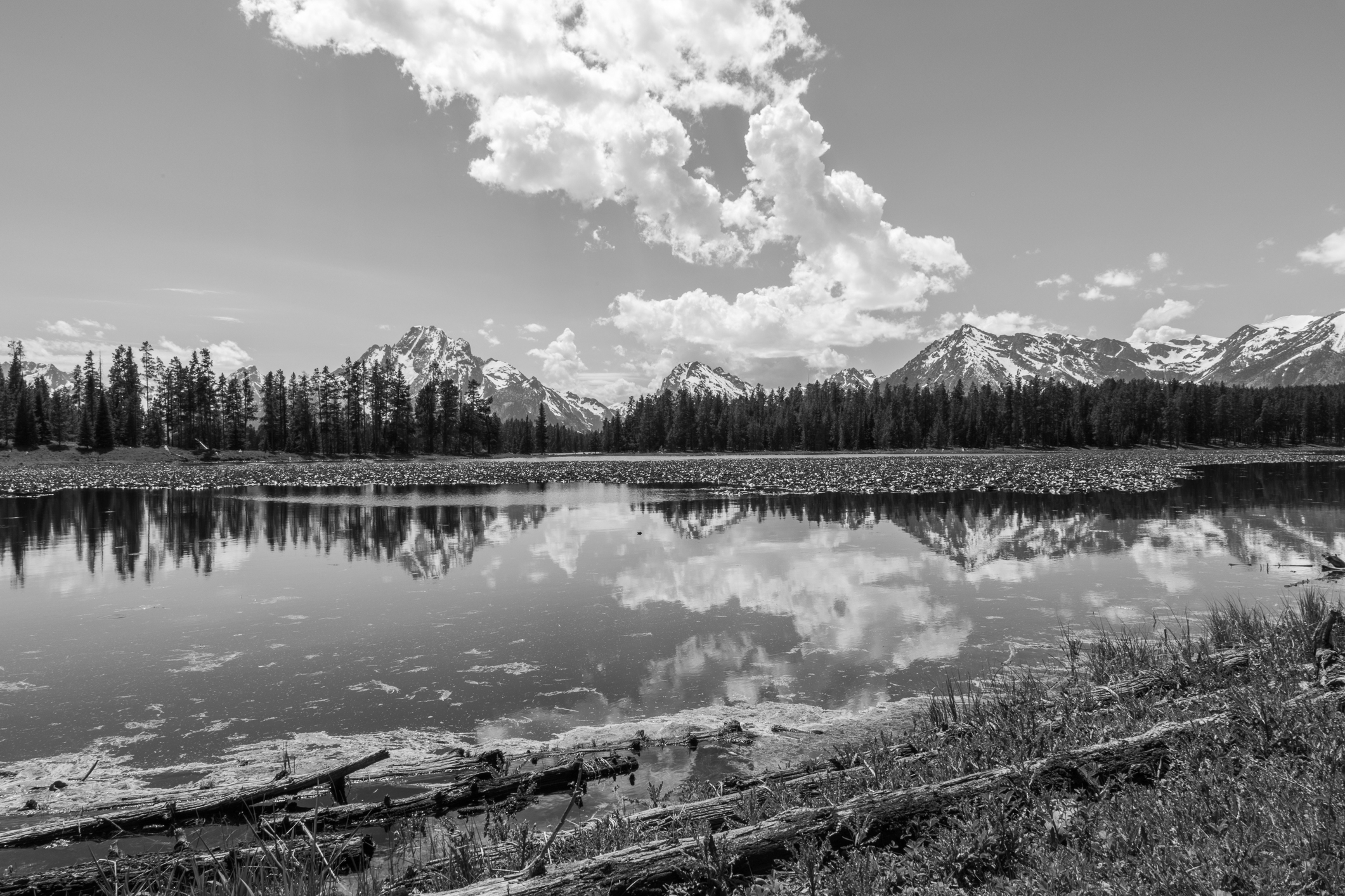 Colter Bay, Image # 3237
