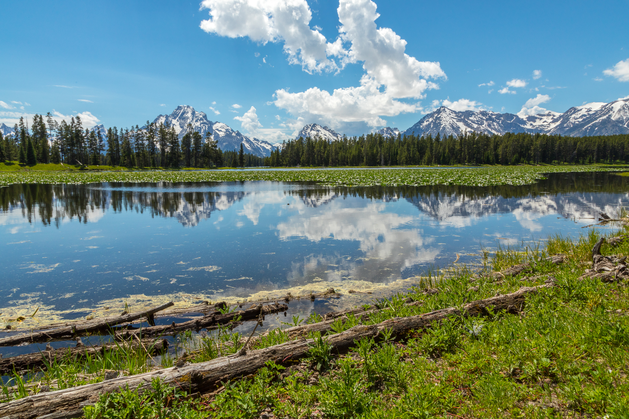 Colter Bay, Image # 3239
